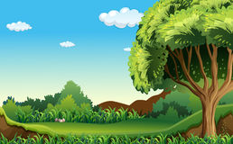 A green environment Stock Photography