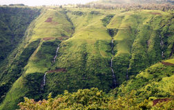 Green ethiopia. A view of the semien mountain park in ethiopia Royalty Free Stock Photography