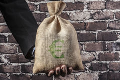 Green Euro In Hand Stock Images