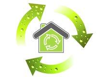 Green Evolution Royalty Free Stock Photos