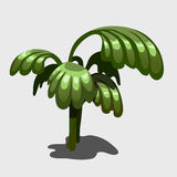 Green exotic plant with large leaves. Vector image Royalty Free Stock Image