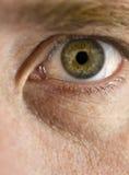 Green Eye. Close up view of a man's green eye looking at camera Royalty Free Stock Image