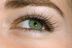 Green eye Stock Image