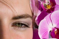 Green eye Stock Photography