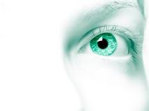 Free Green Eye Stock Photography - 14772502