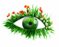 Green eye Stock Photography