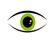 Green eye. Human green eye. Vector illustration Stock Photos