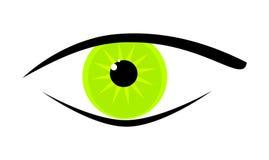 Green eye. An image of a beautiful green eye Stock Images