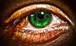 Free Green Eye Stock Photography - 18863242