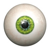 Green eye. An image of an isolated green eyeball Royalty Free Stock Photos