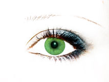 Green eye Royalty Free Stock Photo