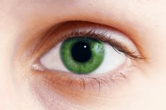 Green eye. Color photo with green eye stock photography