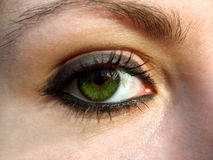 Green eye. Great green eye looking you royalty free stock photo