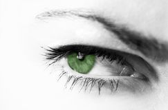Green eye. Woman's eye in black and white with green pupil Royalty Free Stock Images