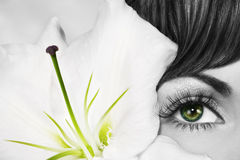 Green Eye Royalty Free Stock Photography