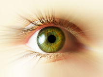 Free Green Eye Stock Photos - 6211183