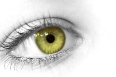 Green eye. Close-up of a female eye stock images