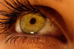 Green eye. Photo of a woman green eye Royalty Free Stock Images