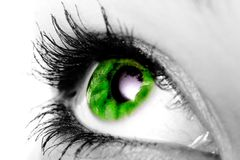 Green eye. Green color eye of a woman Stock Photo