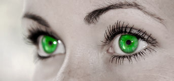 Green Eye - Beautiful, Feminine Royalty Free Stock Photo