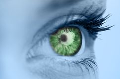 Green eye on blue face Stock Photos