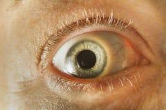Green Eye Close Up Stock Image