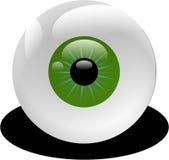 Green, Eye, Close Up, Organ Stock Image