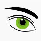 Green eye icon. Woman green eye icon isolated. Vector illustration Royalty Free Stock Photo