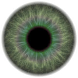 Green Eye Iris Stock Images