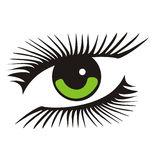 Green eye with long lashes. Vector green eye with long lashes Royalty Free Stock Image