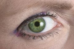 Green Eye Looking at You royalty free stock photos