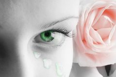 Green eye red rose. Beautiful close up of a green eye and a pink rose and petals painted as tears Stock Images