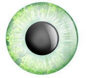 Green eye Stock Photos