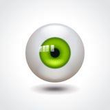 Green eye vector illustration Royalty Free Stock Image