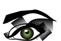 Green eye. View of a beautiful green eyes Royalty Free Stock Photos