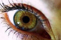 Green eye of woman. Macro view of green eye of young woman Stock Photography