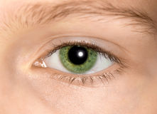 Green eye of a young girl Stock Photos