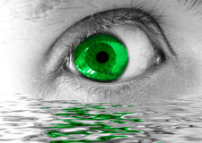 Green eye Royalty Free Stock Photography