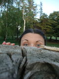 Green-eyed girl peeking behind a tree stump in the woods, peekaboo game Stock Images