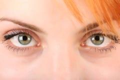 Free Green Eyes Royalty Free Stock Photo - 6376385