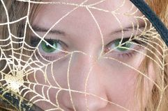 Green eyes. Look through spider's web Royalty Free Stock Photos