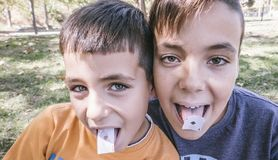 Green eyes Brothers showing playing cards in their mouth stock photography