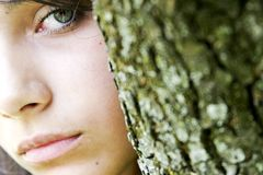 Green Eyes From Behind Tree Stock Photos