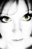 Green Eyes. Girl with green eyes looking up at the camera Royalty Free Stock Image