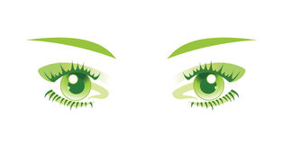 Green eyes isolated. Vector illustration. Royalty Free Stock Image