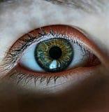 Green eyes. My own eyes Stock Photo