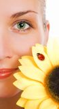Green eyes and sunflower Stock Photo