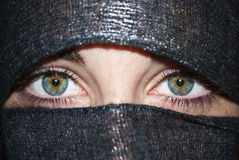 Green eyes with veil Royalty Free Stock Photography