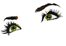 Green eyes of woman. Illustration of green eyes of woman with white background Stock Image