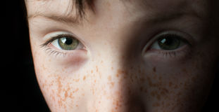 Green eyes of young boy Royalty Free Stock Photography
